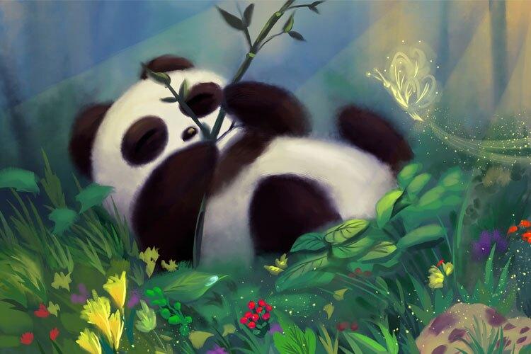 Panda's Life Cycle