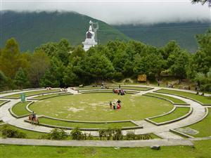 Horse Race Mount