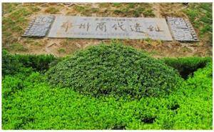 Shang Dynasty Ruins