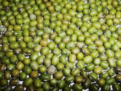 Yingge Mung Bean