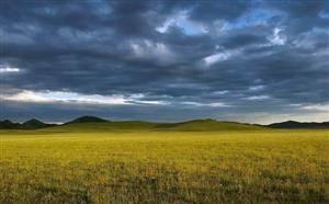 Fengning Grassland
