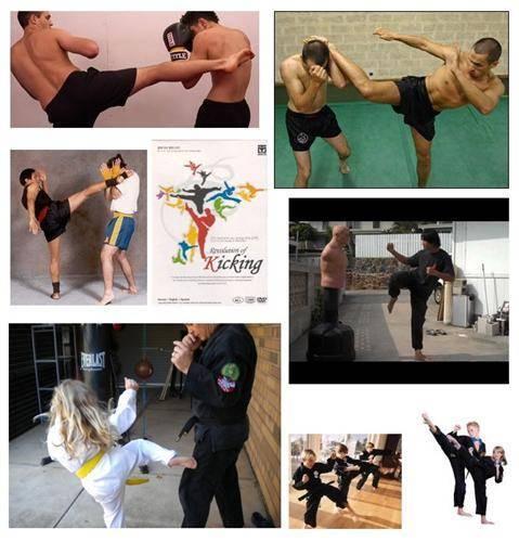 Wing Chun Roundhouse Kick