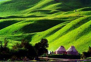 Nalaty Grassland
