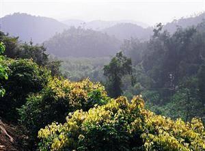 Wugui Peaks