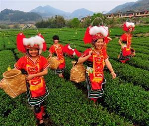 Gaoshan Ethnic Minority