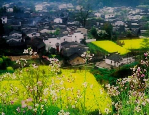 Wuyuan County