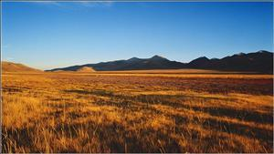 The North Tibet Grassland