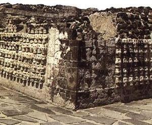 Biru Skull Wall