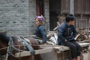 Basha Miao Village