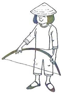 The Havk Kite