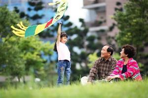 Modern Chinese Kite