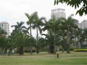 Bailu Zhou Islet Park