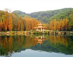 Xianhu Botanic Garden