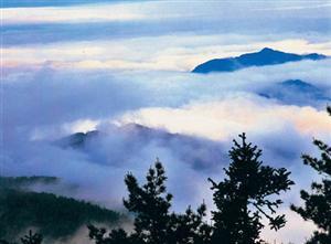 National Forest Park of Mount Dawei