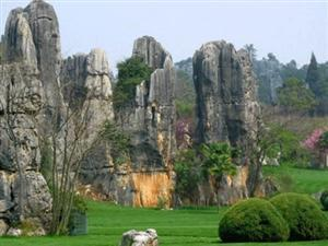 Lingyin Stone Forest