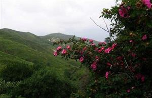 Shizhu Mountain Scenic Area