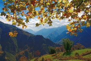 Ailao Mountain