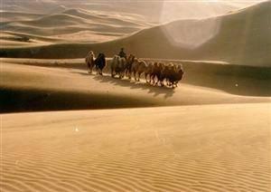 The Kubuqi Desert