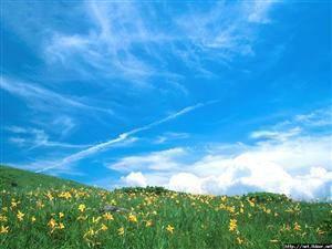 Ordos Grassland Tourist Area