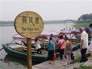 Baiyangdian Lake