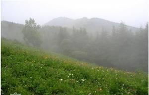 Wuyuezhai Scenic Area
