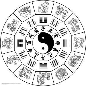 Two Categories of Yin and Yang for the Twelve Animal Signs