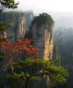 Zhangjiajie Sandstone Peak Forest Geopark