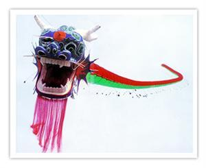 Centipede kites