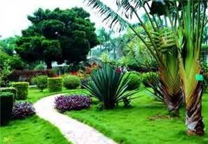Nanya Garden