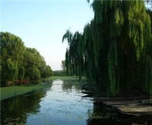 Mada Lake