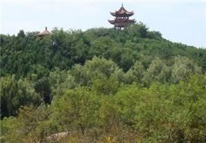 Yuzhou Forest Botanical Garden Scenic Spot