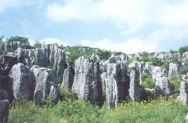 Nishui Stone Forest