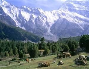 Muztag Peak