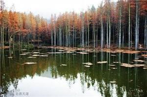 Dabieshan National Forest Park