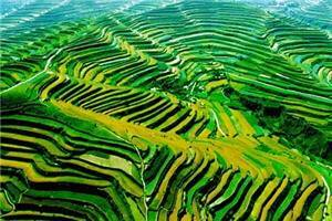 Zhuanglang terraced fields