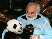 5-Day Chengdu Panda Tour