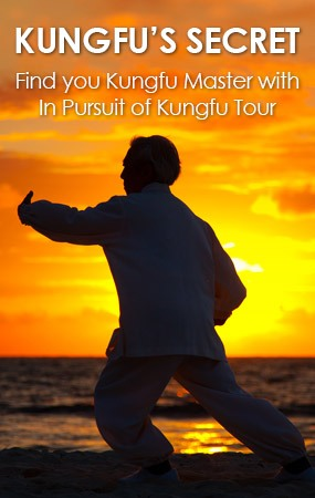 Find you Kungfu Master with In Pursuit of Kungfu Tour