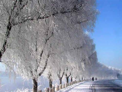 The Amazing Rime in Jilin