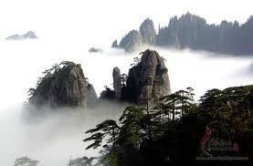Mount Yellow Festival