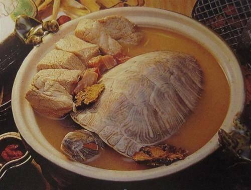 Tonic Foods
