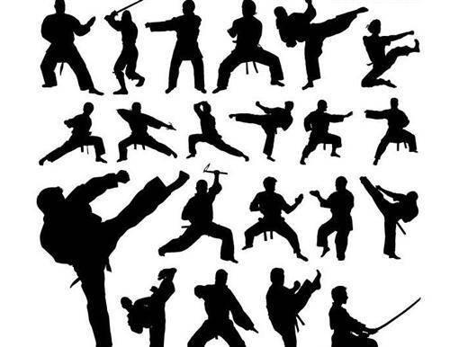 Kung Fu Postures